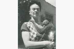 frida-with-monkey