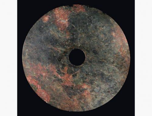 Bi Disk (48110)