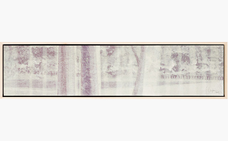 White Veil, Leopoldo Cuspinera Madrigal